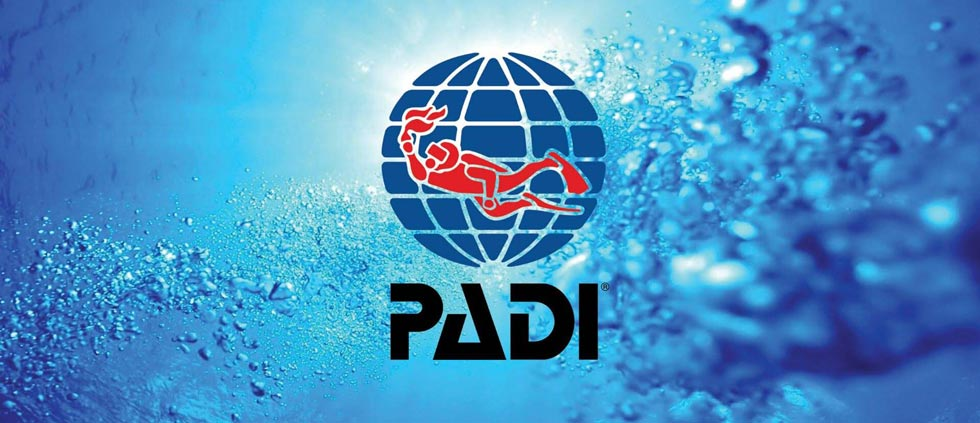 QYSEA X PADI: Sharing and Conserving the Ocean's Beauty Through Technology